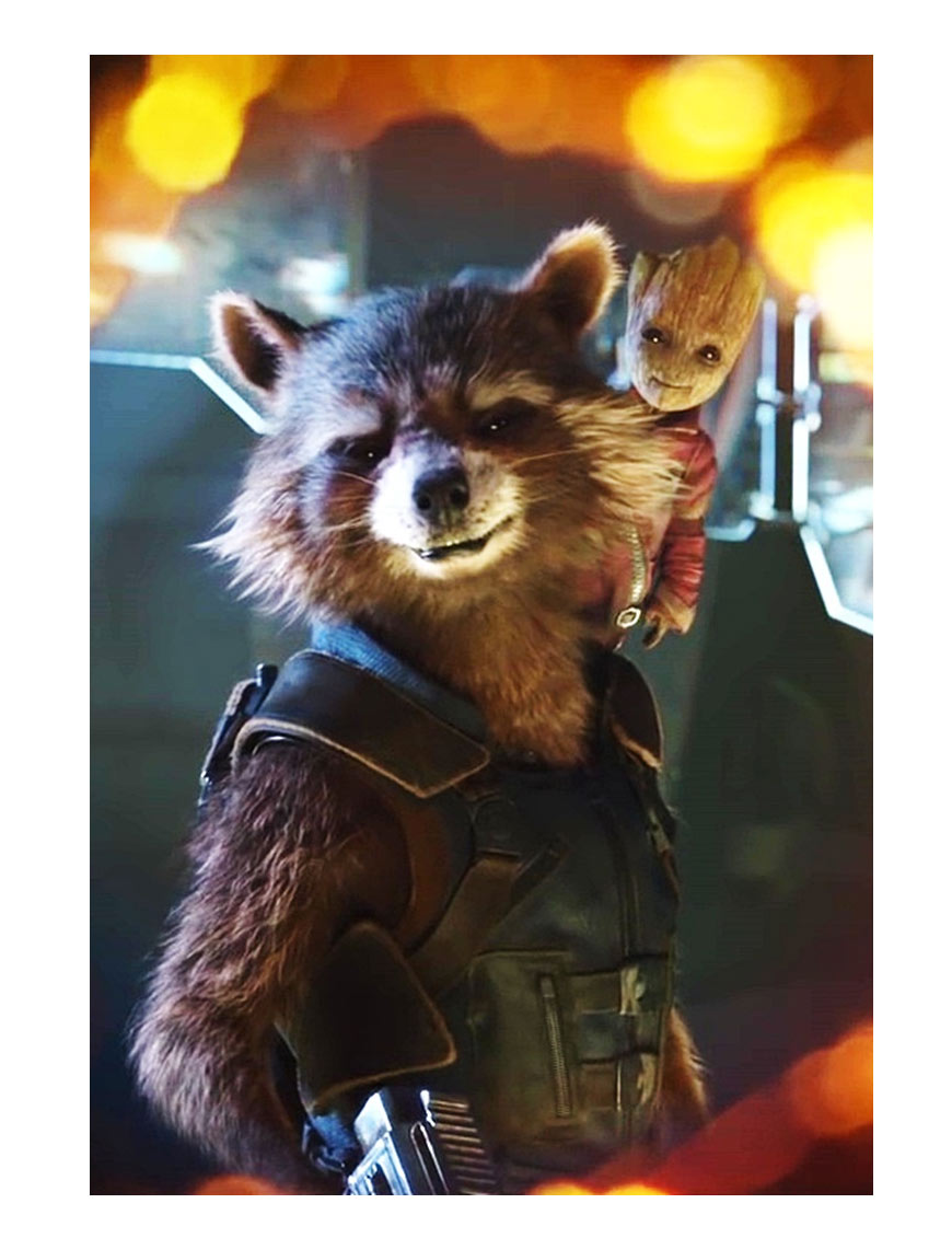rocket raccoon leather vest