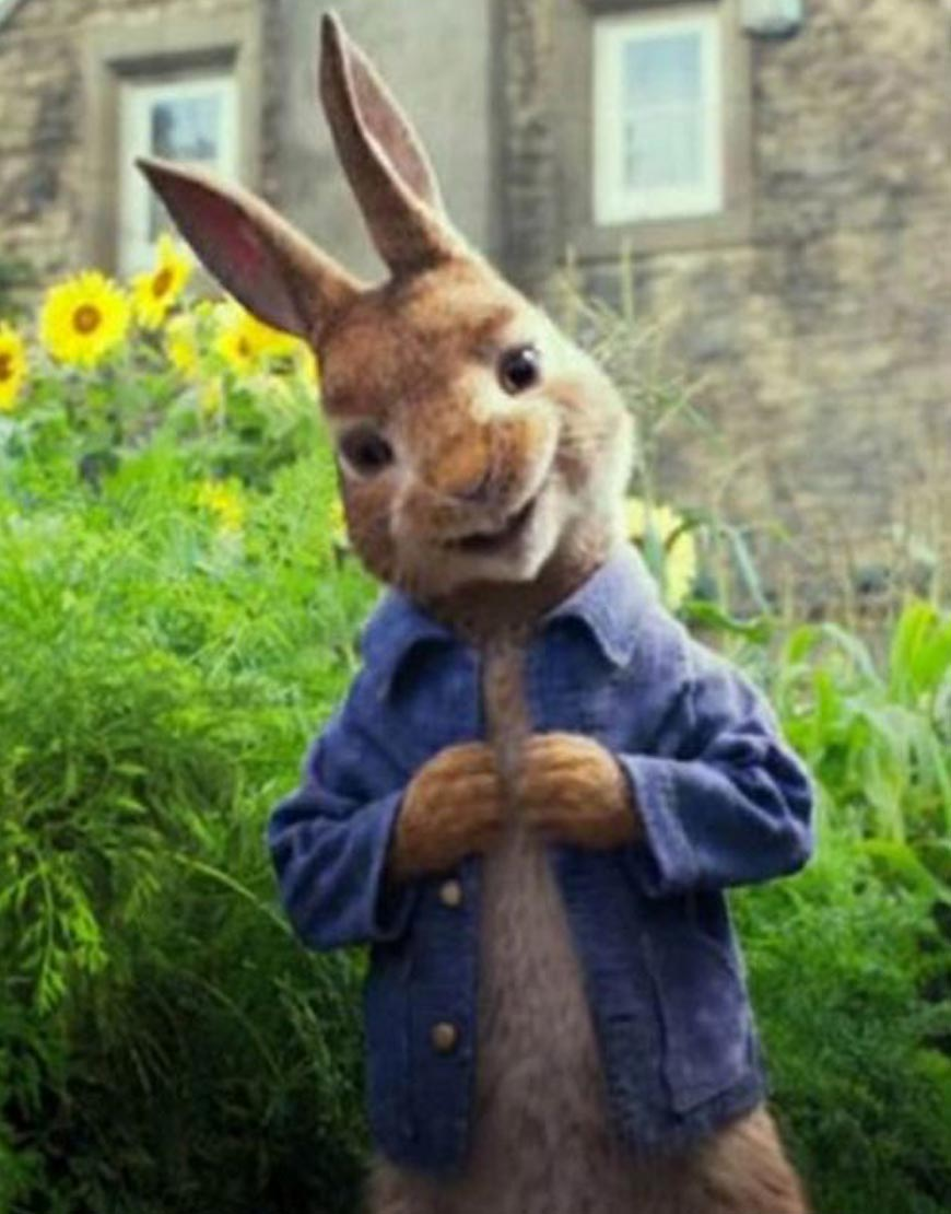 Peter-Rabbit-James-Corden-Blue-Jacket
